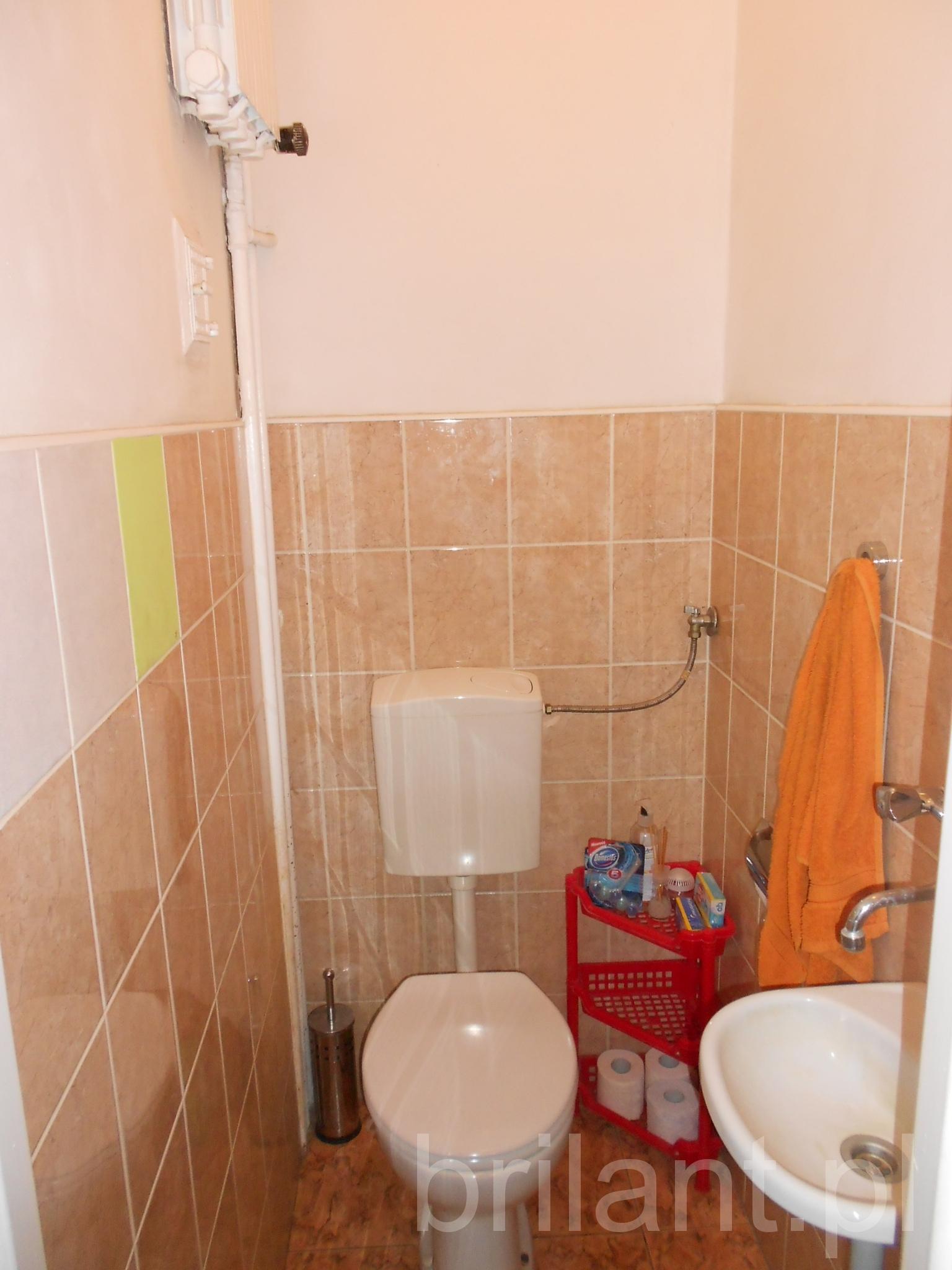 Toaleta przed metamorfozą